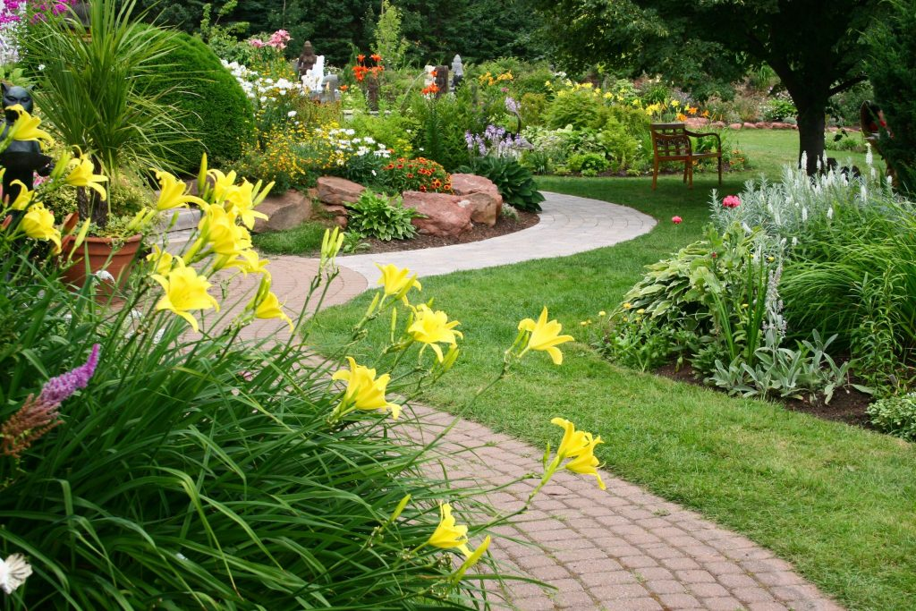 Best Shrubs for Sacramento Landscaping